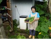 生ごみ堆肥有機栽培